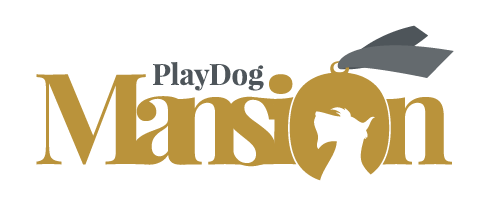 PlayDog Mansion - Dog Boarding Kennels Cheshire & Frodsham